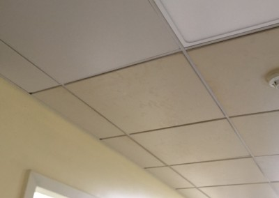 Ceiling Tiles Clean Connolly